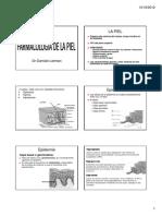 PIEL 1 2013.pdf