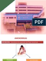 Amenorres + CA Ovario + CA de Endometrio