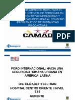 Presentación Centro de Atención Móvil, CAMAD - Bogotá