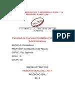 Informe Final de La Procesion_milagros