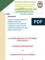 Sintesis de Carbohidratos