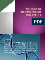 Métodos de información de una célula