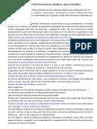 Creation Site Web Maroc Et Referencement Site Web Maroc Agence Web Maroc1400scribd