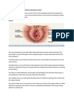 Anatomy and Physiology of Female Reproductive System
