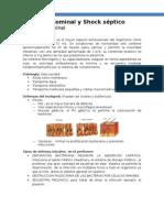 Sepsis Abdominal y Shock Septico