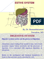 01 Digestive System.