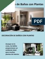 Decoración de Baños con Plantas