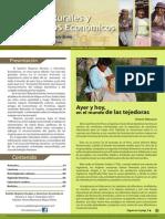 Mujeres Rurales y Derechos Económicos
