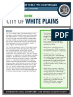 White Plains fiscal profile
