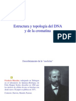 15 EstrucDNA