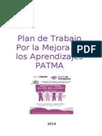 Indice y Esquema de Patma 2014