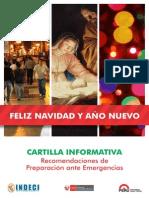 cartilla fin de año 2013 PDF
