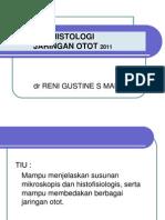 histologi jaringan otot