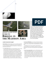 Guide to Birding in the Madison Area