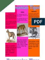 Lucy Marcella Tasmanian Tiger (Web)
