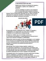 El desarrollo del niño.docx