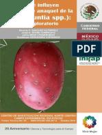 Folleto Tuna  TAMAÑO REAL ok.pdf