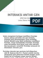 Interaksi Antar Gen1
