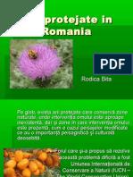 Arii protejate in Romania