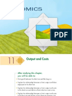 Outputs and Costs