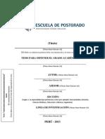 Esquema Desarrollo Del Proyecto de Investigaci n Ucv 2013