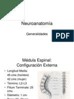 01 Generalidades Medula Espinal