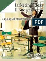 7335828 Big Marketing Ideas to Grow Your Business 50 Pgs PDF