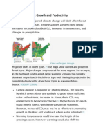 Impacts on Forest Growth and Productivity
