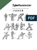 Shaolin Cuan Gong Quan