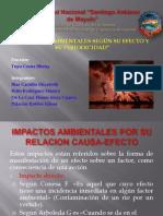 Impactos Ambientales Por Su Relacion Causa-efecto