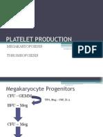 Platelet Production