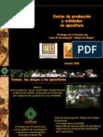 Costos de Produccion Red Miel Ppt 2009 10-22-16!49!06