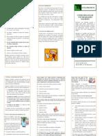 Guia Prático - Como realizar um trabalho escrito
