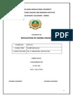 Replication of Gemini Virus - By a.bharanideepan