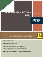 Pert 14-Bat Beku 2013