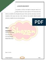 Final Shezan Strategic Analysis Planning