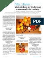 Conservare Frutta Ortaggi