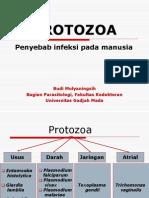 Protozoa 1.ppt