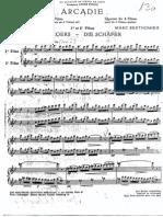 Berthomieu Arcadie 4 Flautas
