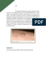 tumores de la dermis.docx