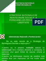 Strategia Nationala de Reintegrare Sociala a Persoanelor Private de Libertate
