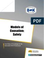 32 Models of Causation Safety
