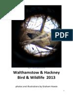 Walthamstow and Hackney Birds and Wildlife 2013