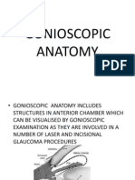 Gonioscopic Anatomy Ppt