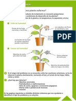 Guía Fitosanitaria2.pdf