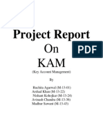 Project Report on KAM_Modified
