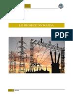 Learning Organization project on WAPDA