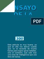 Ensayo 300