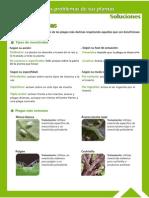 Guía Fitosanitaria9.pdf