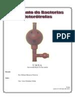 Informe Microbiologia - Laboratorio 6
